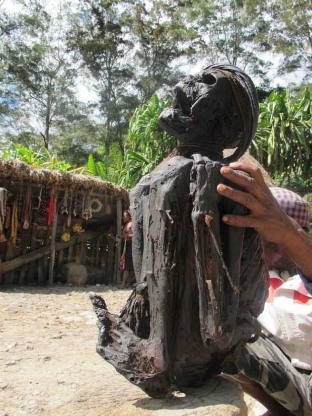 suku-dani6-mumi